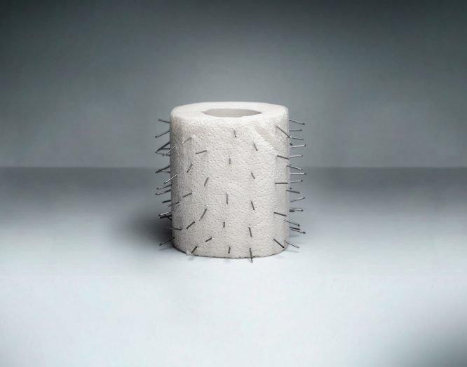 WC-Papier mit Nadeln