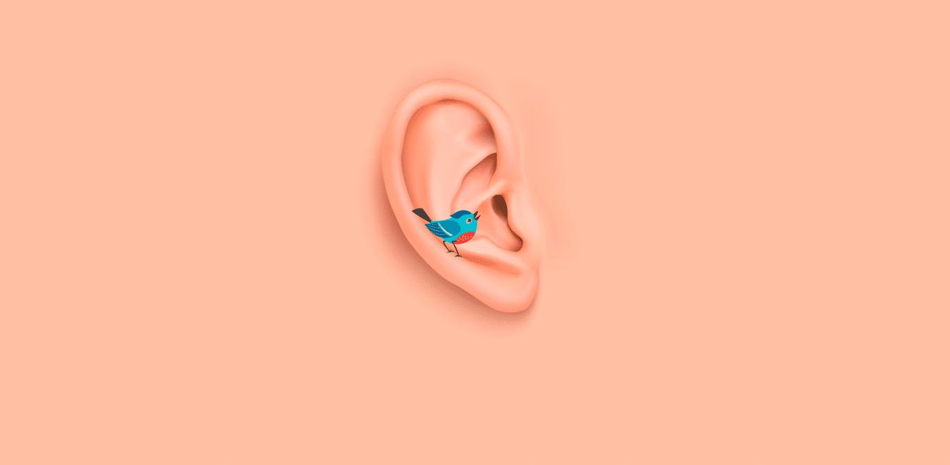 Symbolbild eines Vogels der in ein Ohr zwitschert