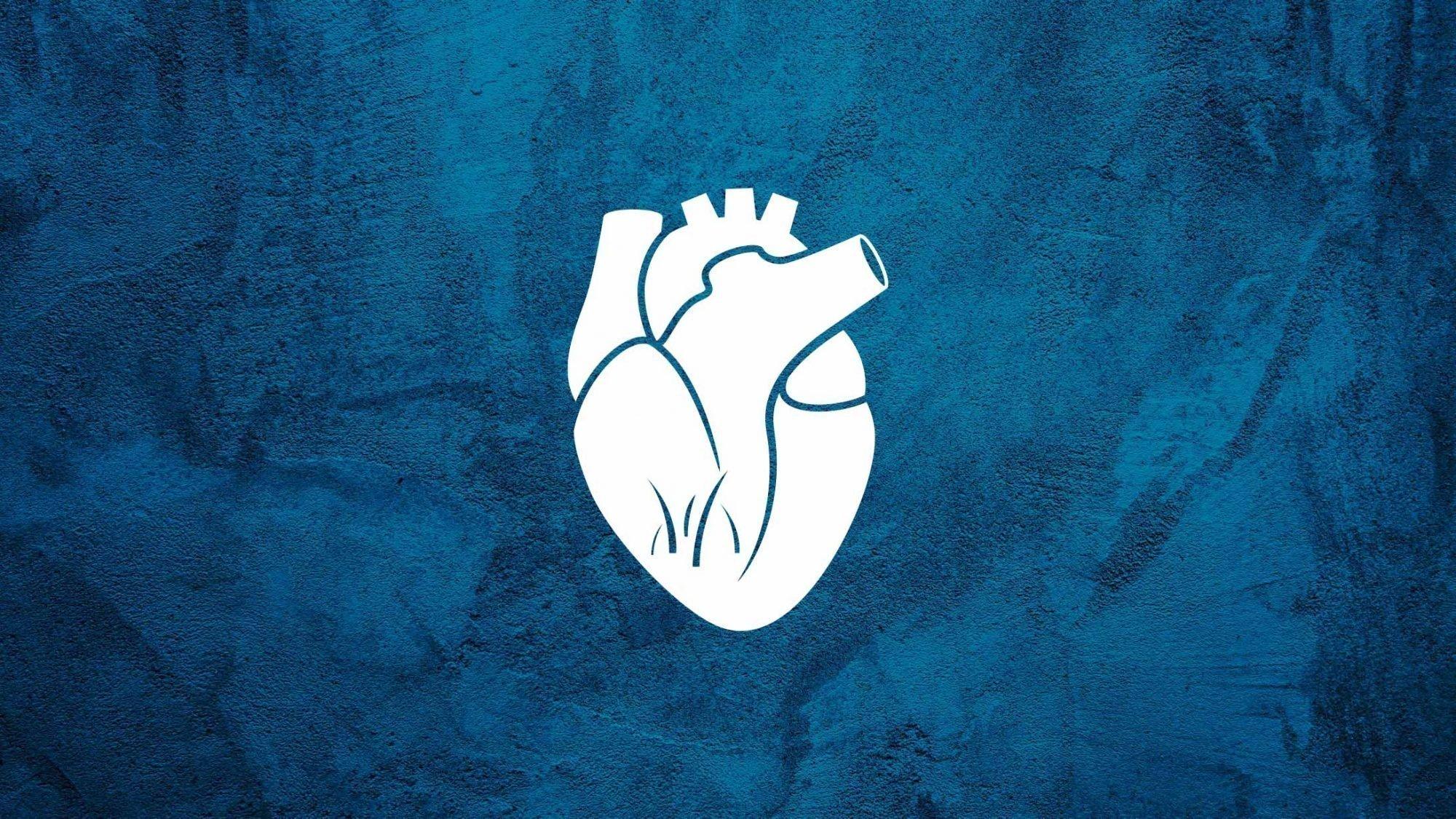 Karim Eid: Illustration eines Herzens mit Zitronengras.