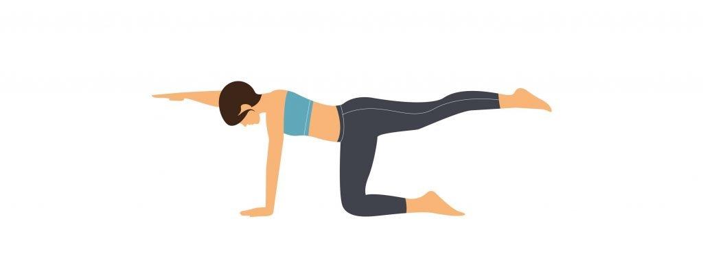 Übung 4: Balancieren auf vier Füssen
