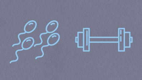 Illustration des Hormons Testosteron