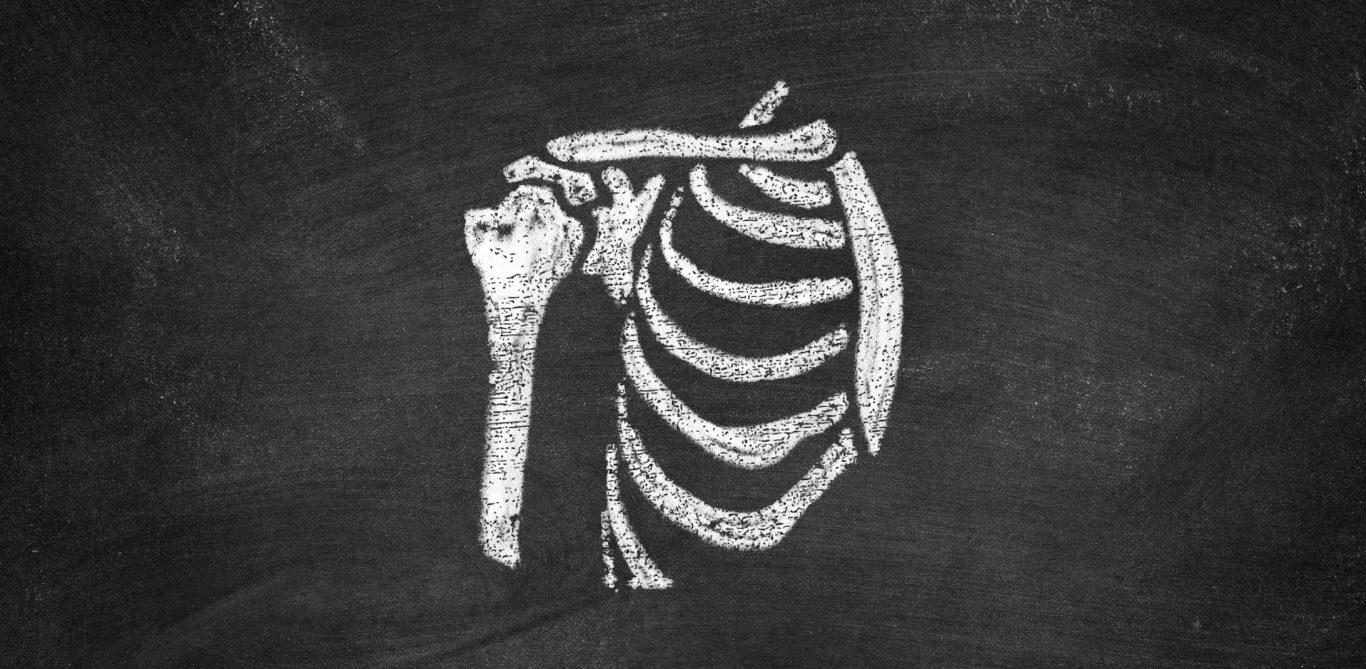 Zeichnung einer Schulter auf einer Wandtafel