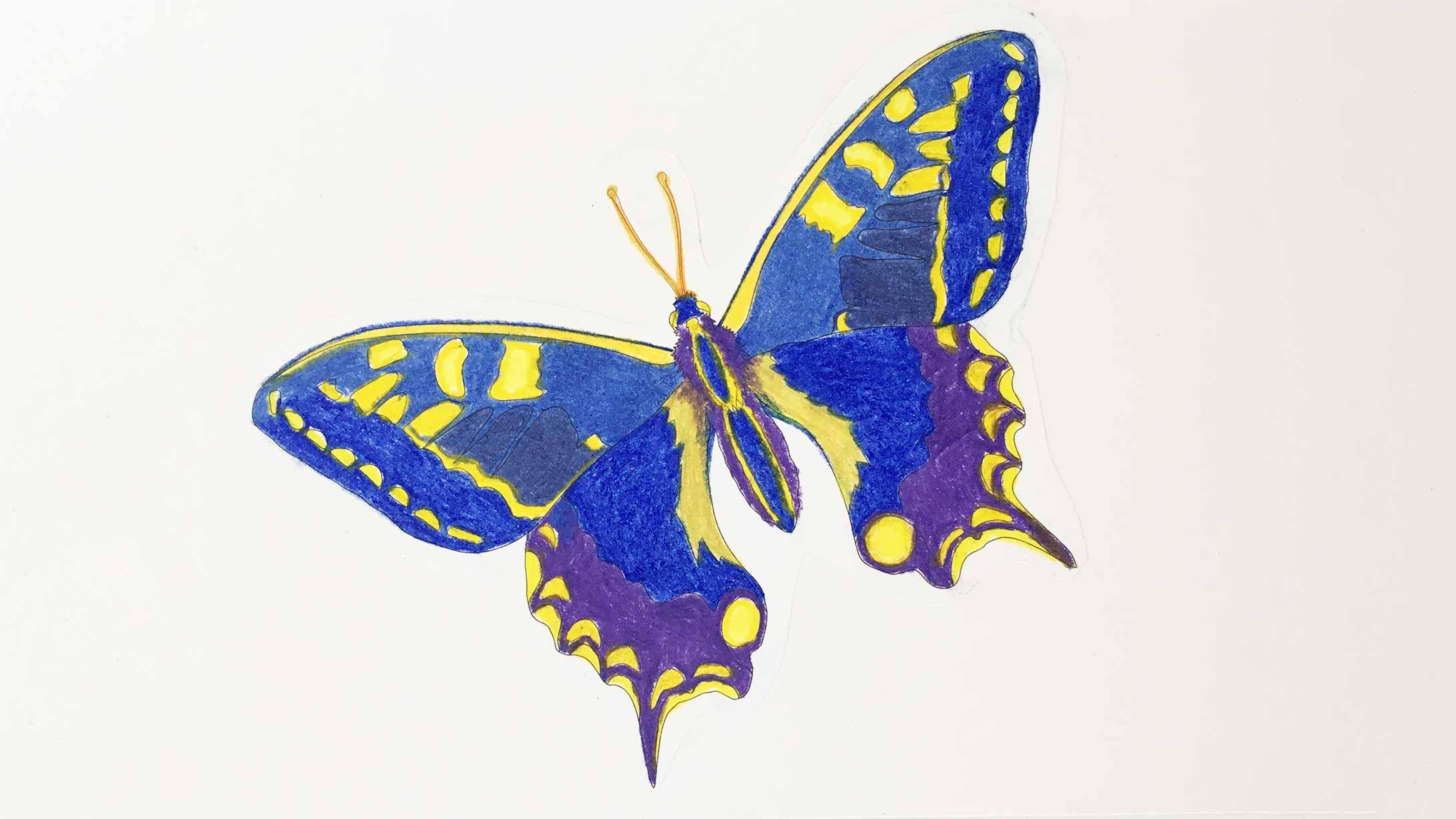 Ein Bild von einem Schmetterling. Gemalt in der Kunsttherapie
