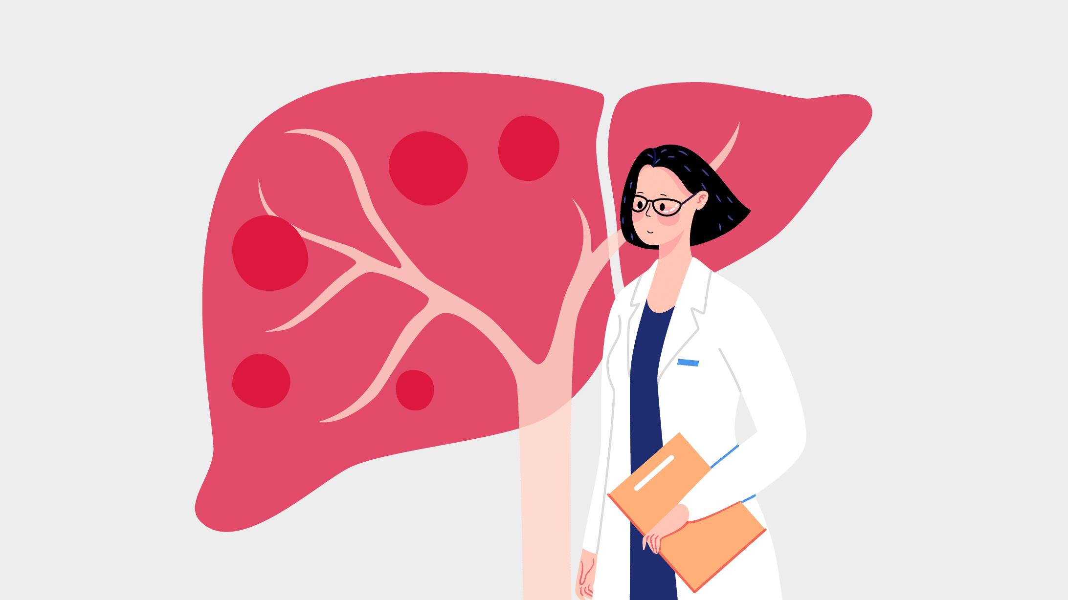 Illustration einer Ärztin vor einer Leber
