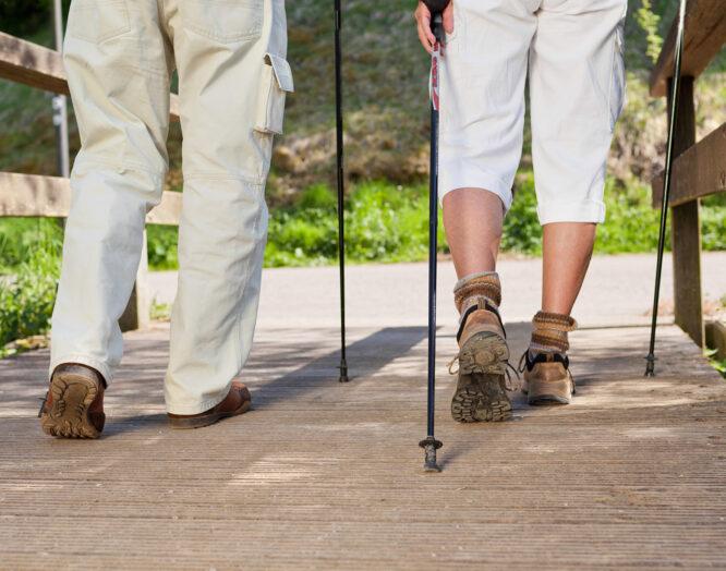 Hintenansicht von zwei Personen am Wandern mit Wanderstöcken.