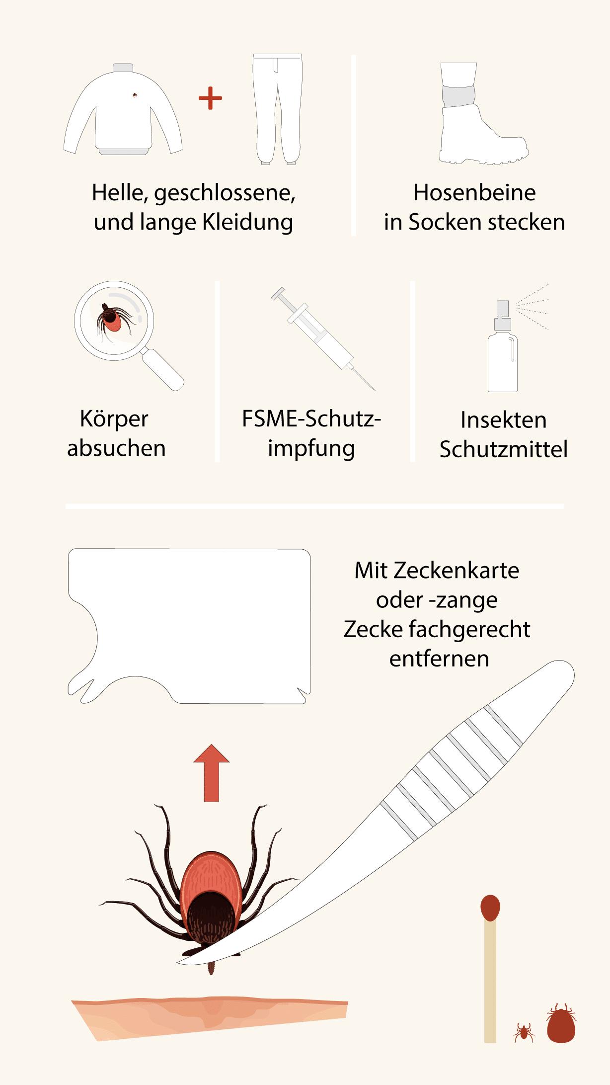 Die Infografik zeigt, mit welchen Massnahmen man sich gegen Zeckenstiche schützt.